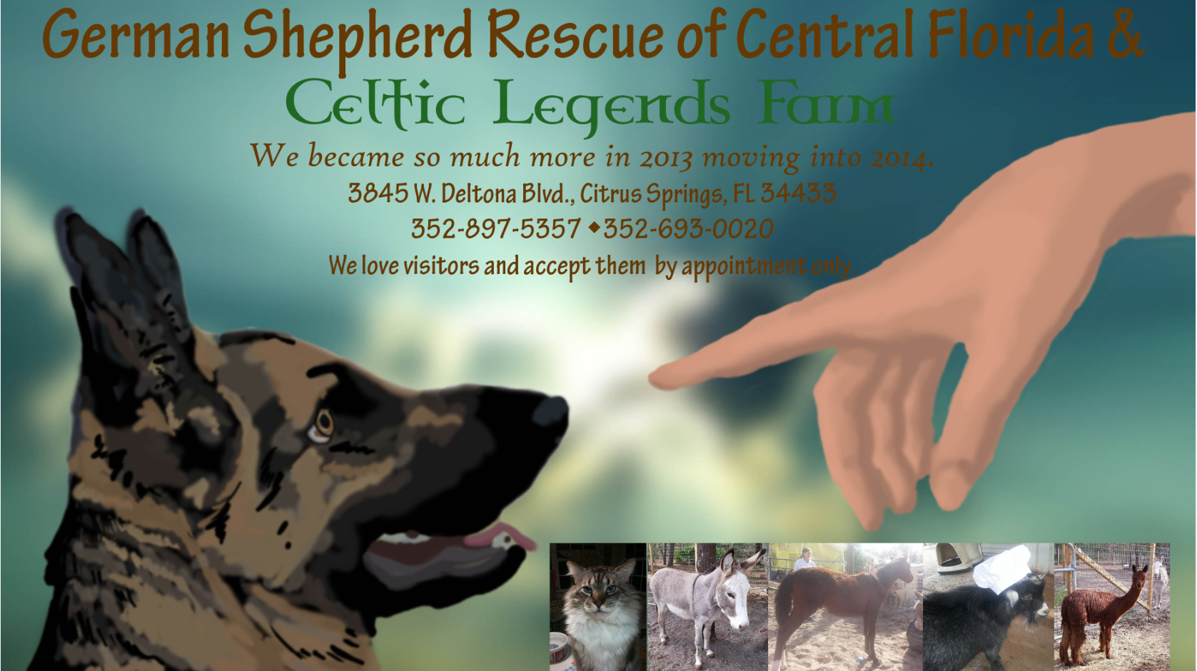 German Shepherd Rescue of Central Florida