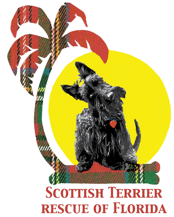 Scottish Terrier Rescue of Florida