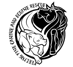 Feeling Fine Canine and Equine Rescue