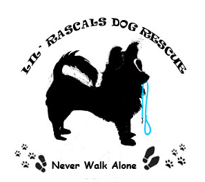 Lil' Rascals Dog Rescue