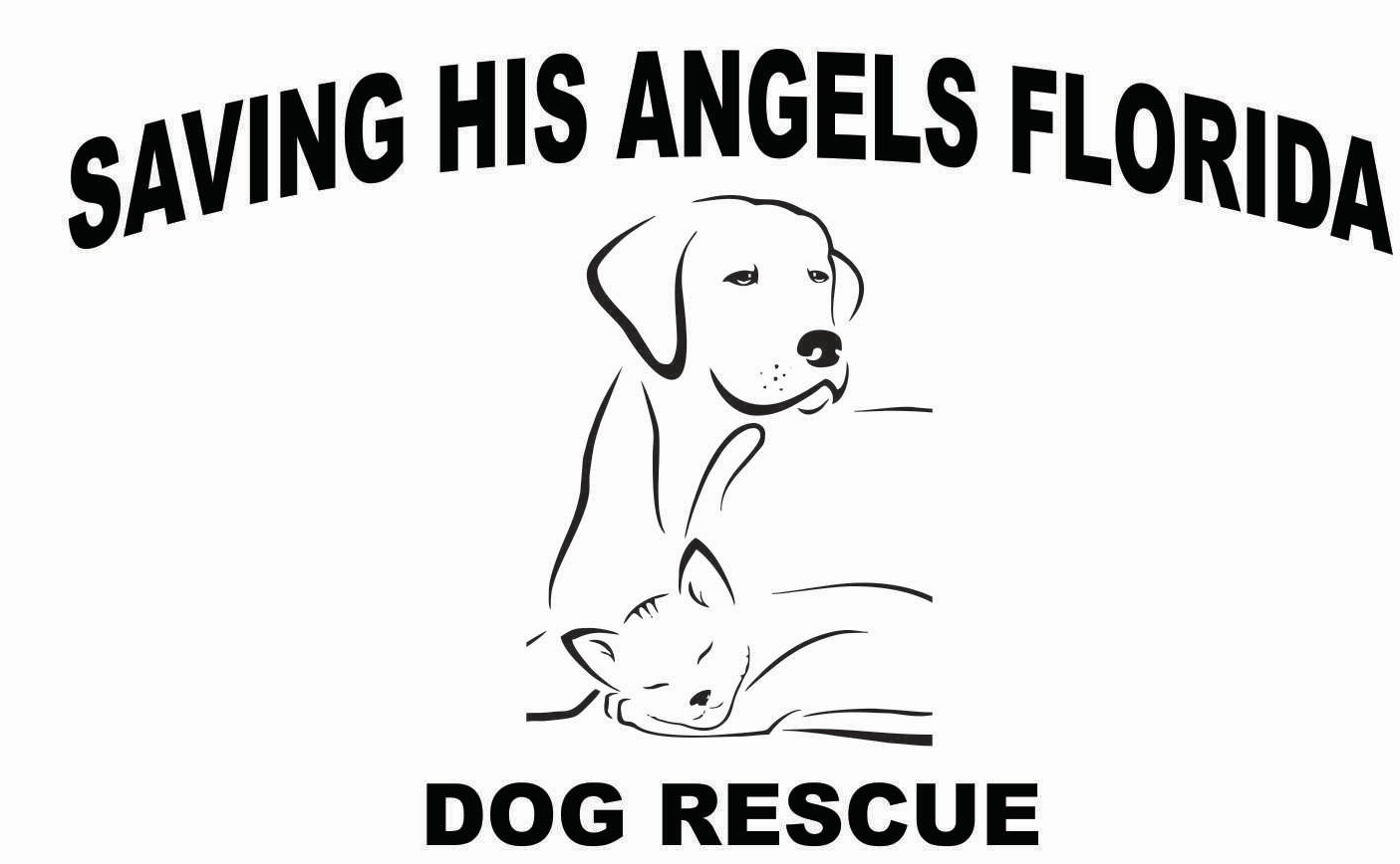 Saving HIS Angels Animal Rescue