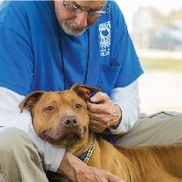 Foto de un técnico de OCAS acariciando a un perro